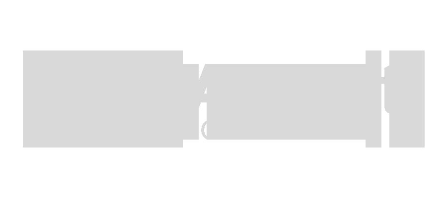 DAMA Fleet